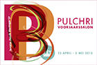 Pulchri voorjaarssalon 2013